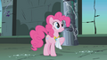 Pinkie Pie you know what this calls for S01E02.png
