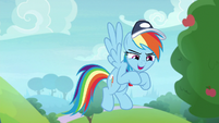 Rainbow Dash -everypony on that field- S9E15