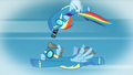 Rainbow taking a picture of Wind Rider S5E15.png