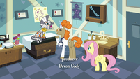 Zecora and Fluttershy in Dr. Horse's office S7E20