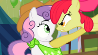 "Apple Bloom ""ONE! DAY!"" S2E5"