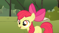 Apple Bloom 'that makes much more sense' S1E23.png