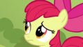 Apple Bloom worried close-up S5E17.png