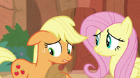 Applejack apologizing to Fluttershy S8E23