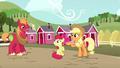Applejack points Apple Bloom to Big Mac S5E17.png