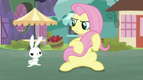 Bunny Fluttershy and Pegasus Angel S9E18