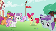 Fillies confused