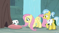 Fluttershy mimes appreciation for Angel S9E18