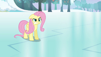 "Fluttershy snaps ""not! your! friend!"" S03E10"