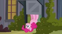 Pinkie Pie upside down S2E18
