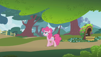 Pinkie Pie walking by herself S1E05