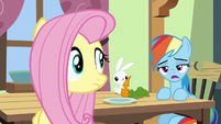 "Rainbow Dash ""maybe like seventy percent"" S6E11"