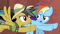 Rainbow Dash --if Quibble says go over him-- S6E13