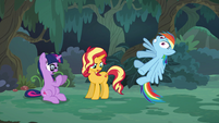 Rainbow Dash struggling to stand straight EGSB