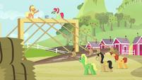 Raise This Barn stallions raising framework S3E08