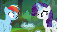 Rarity plugs Rainbow's nose with a twig S8E17