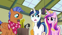 """Shining Armor """"this has been great"""" S7E3"""