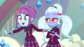 """Sunny Flare """"we'll make one epic music video"""" EGS1.png"""