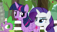 Twilight Sparkle --I didn't realize-- S6E10