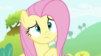 A confused Fluttershy S4E18