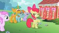 "Apple Bloom ""You seein' dis?"" S2E6.png"