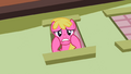 Cherry Berry says sorry S2E08.png