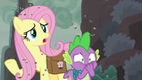 "Fluttershy ""magic to keep them cold"" S8E25"