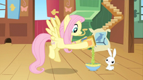 Fluttershy feeding Angel S02E19