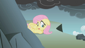 Fluttershy scared of the cliff S1E07.png
