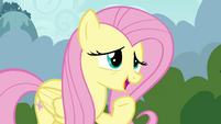 Fluttershy suggests -a special Breezie cheer- S4E16