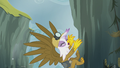 Gilda dragged along by Pinkie's stunt S5E8.png