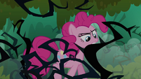 Pinkie walking thorugh the brambles S3E03