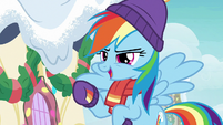 """Rainbow Dash """"some fast animal out there"""" MLPBGE"""