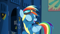 Rainbow Dash --couple of improvements-- S6E7