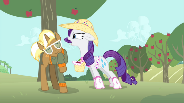 "File:Rarity ""Why don't you go ask her yourself?"" S4E13.png"