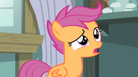 Scootaloo 'But flying's what Pegasus ponies are supposed to do!' S4E05