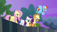 Twilight's friends looking into the ravine S4E02