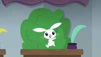 Angel Bunny jumping on his desk S8E2