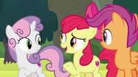 "Apple Bloom ""fair if we visited both places"" S8E6"