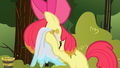 Apple Bloom cleaning her face S1E23.png