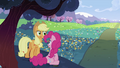 """Applejack """"Going on here"""" S2E03.png"""