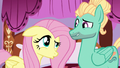 """Fluttershy """"what did you do?"""" S6E11.png"""