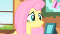 Fluttershy realized what shes late for S01E22.png