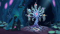 Queen Chrysalis looks at the Tree of Harmony S8E13