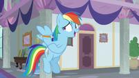 "Rainbow Dash ""wherever they are"" S8E1"