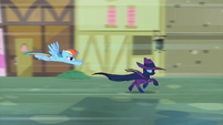 Rainbow Dash chasing Mare Do Well S2E08