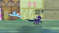 Rainbow Dash chasing Mare Do Well S2E08