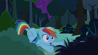 Rainbow Dash cheers Daring Do on S4E04