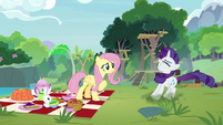 Rarity screeching to a halt S8E4