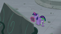 Spike trying to cheer Twilight Sparkle up S7E25